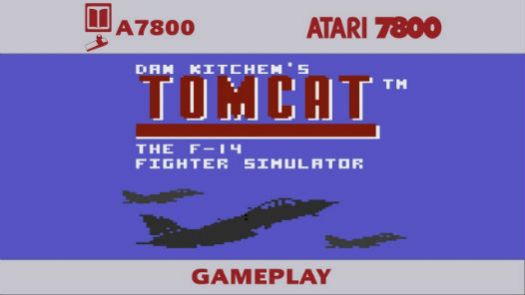 Tomcat - The F-14 Fighter Simulator